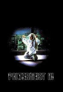 Полтергейст-3: Последняя глава