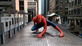 Человек-паук-2 / Spider-Man 2