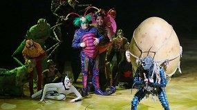Жизнь насекомых: 5 фактов о Cirque du Soleil и их шоу «OVO»