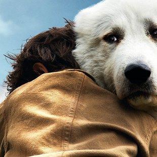 Белль и Себастьян: Приключение продолжается