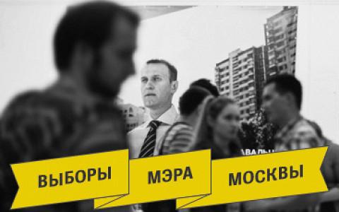 Предвыборная кампания глазами волонтера