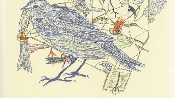 Территория Zoo Art. Искусство между животным и человеческим