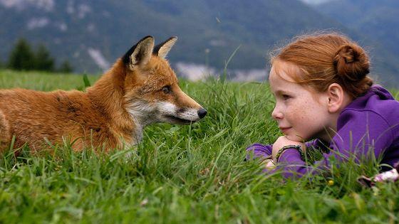Лисенок и девочка (Le renard et l'enfant)