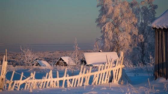 Максим Бойков: Вепсский лес, или История одного дня