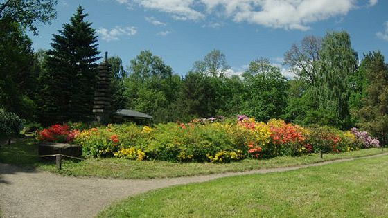 Ботанический сад им. Цицина РАН