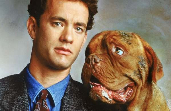 фильмов про собак