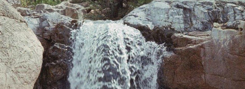 Кино: «Сокотра: Неизвестная сказка»