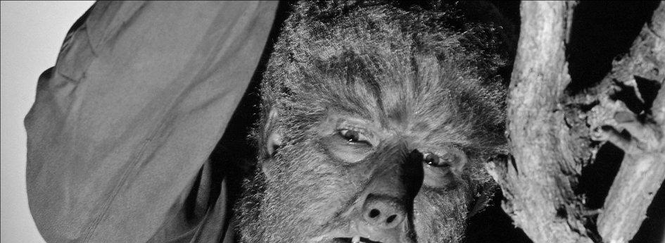 Кино: «Человек-волк»