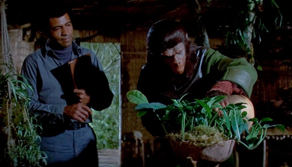 Кино: «Битва за планету обезьян»