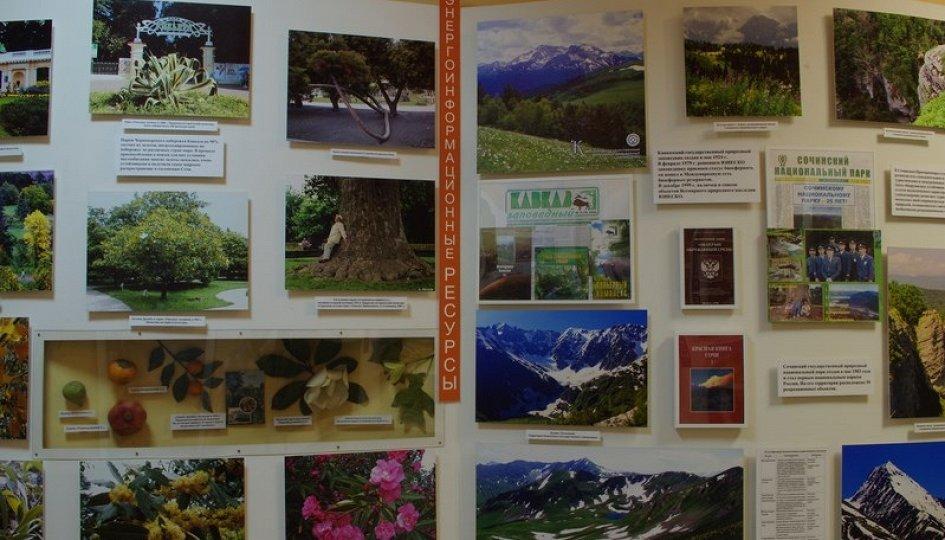 Выставки: Рекреационные ресурсы курорта