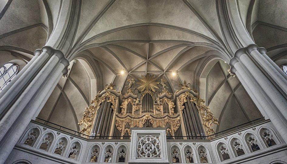 Концерты: «Три величества. Орган, клавесин, рояль»: Лариса Тимшина