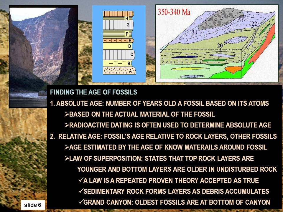 Carbon dating earth age