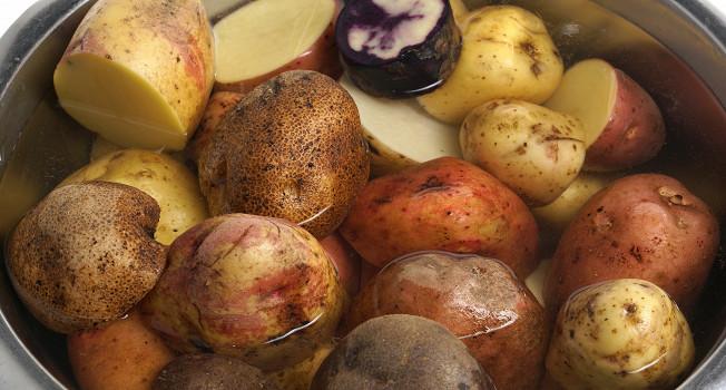 32 сорта картофеля: для варки, жарки и запекания
