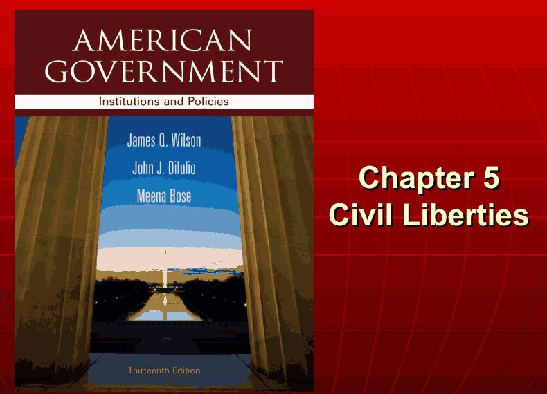 American government essay topics