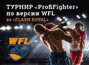 """Турнир по боксу """"ProfiFighter"""" по версии WFL"""