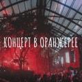 «Мелодии из солнечной Грузии»: Ансамбль «Акапелла-Сакартвело»