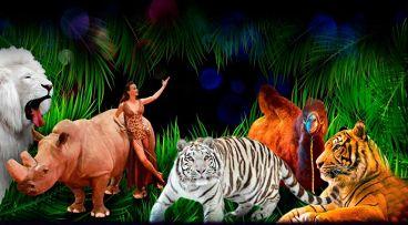 """""""Цирк больших зверей - """"Африка"""""""