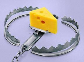 Секреты бесплатной рекламы, или Бесплатный сыр  без мышеловки